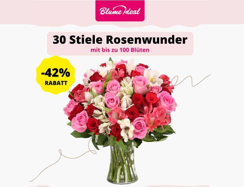 30 Stiele Rosenwunder XXL mit bis zu 100 Blüten